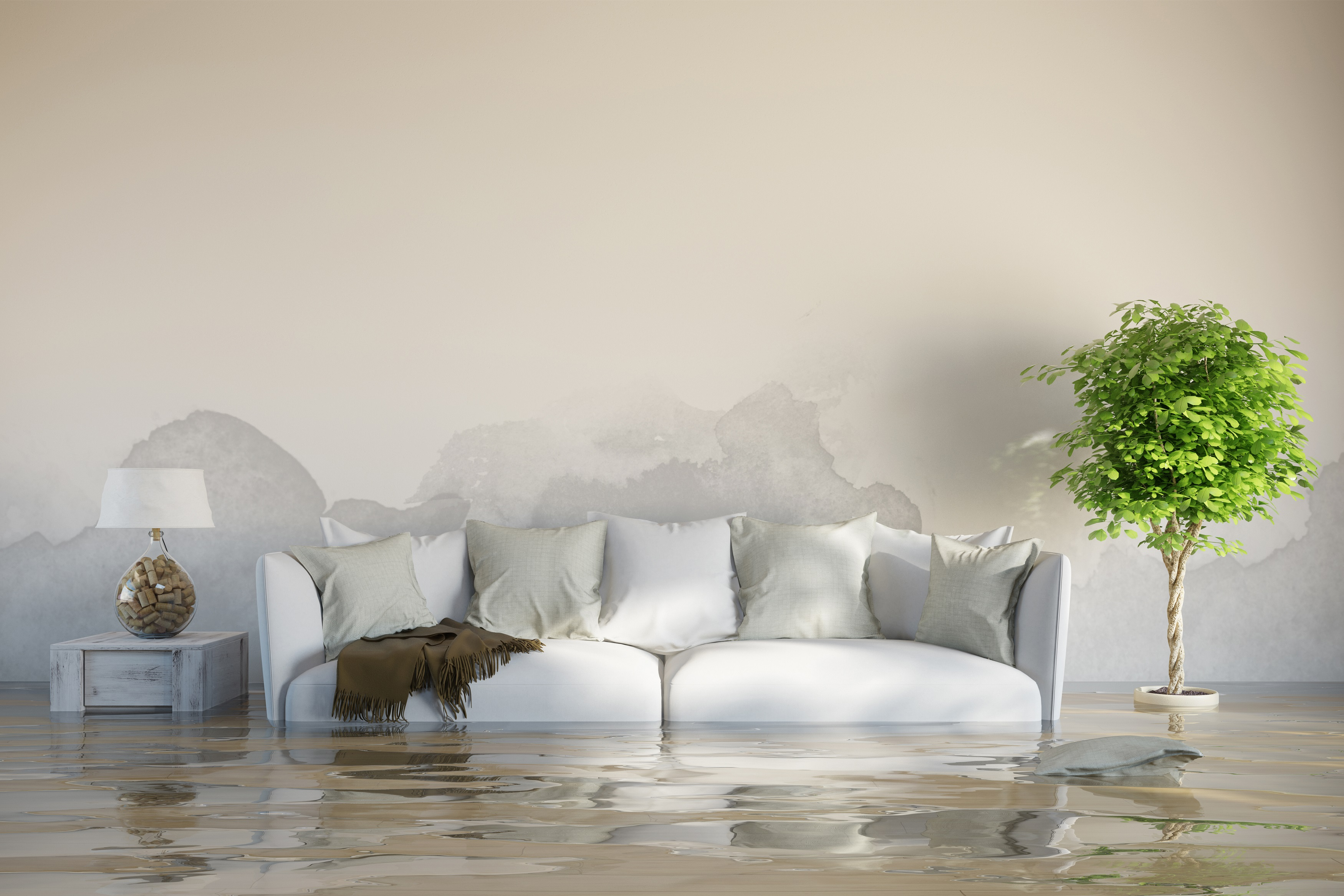 Purity Cleaning Water and Flood Damage
